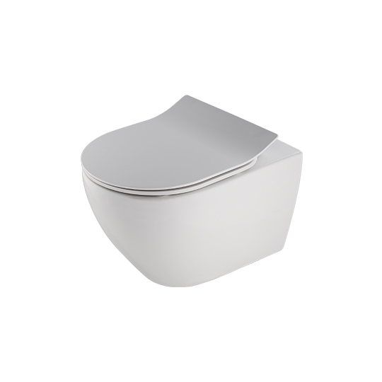 Wall-Hung Toilet W/Toilet Seat & Cover