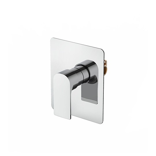 Single-Handle Concealed Valve (Upward Outlet)