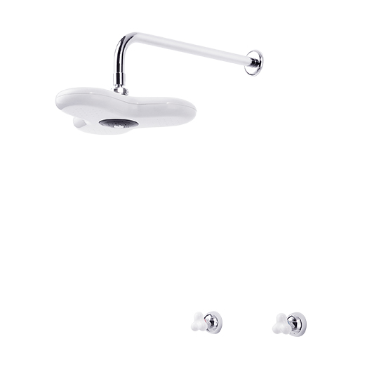 Two-Handle Valve With Showerhead